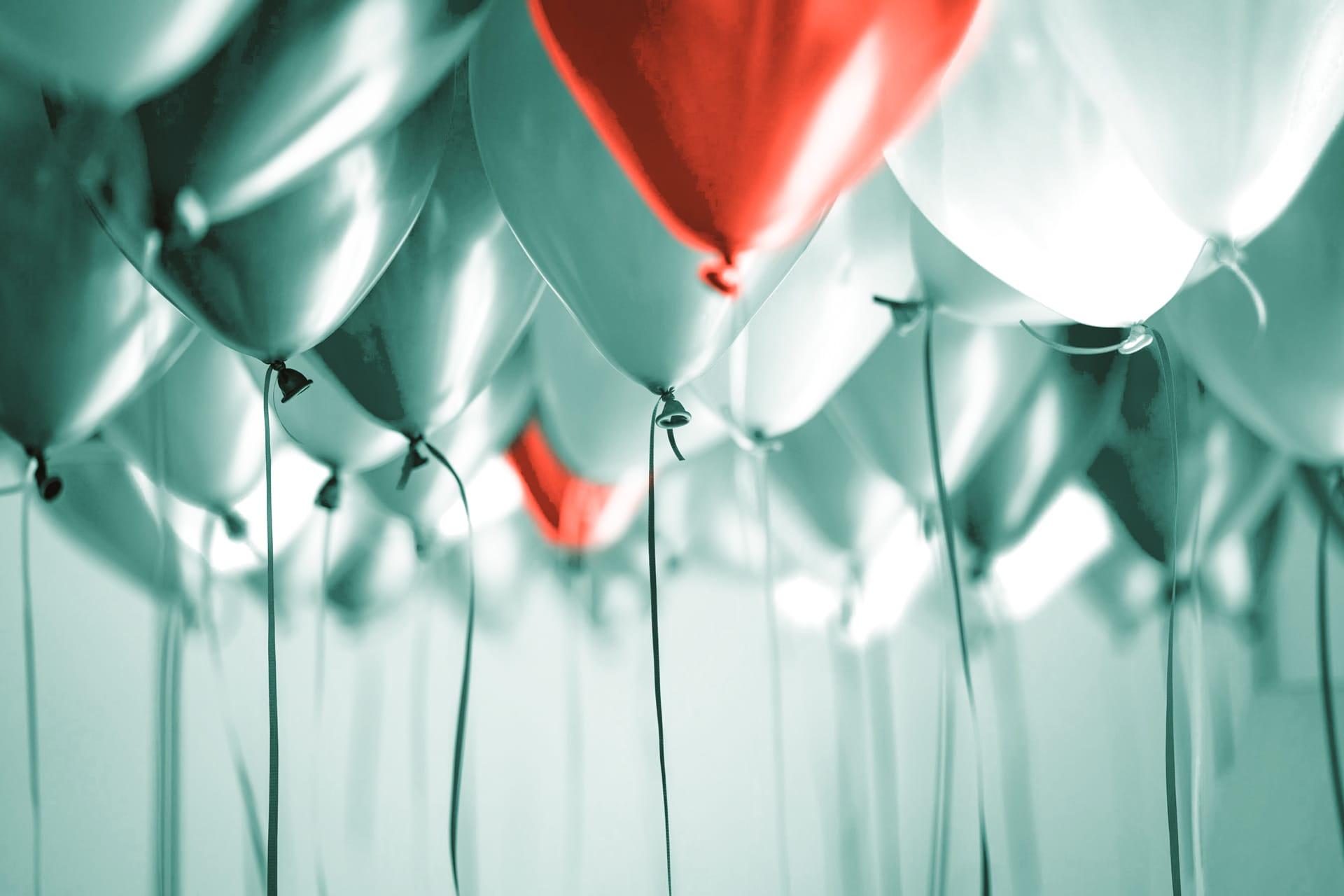 VW Bulli mieten Junggesellenabschied Party Ausflug Luftballons Frauen Mädelsausflug Überraschung Geschenk